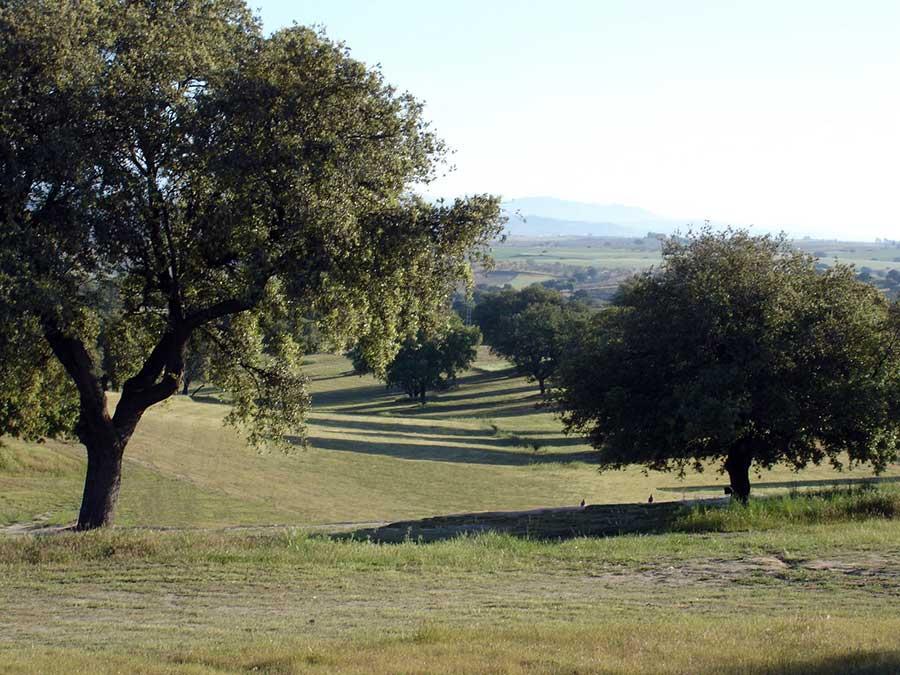 """Club de Golf """"El Espinar"""" (Segovia) - primer campo rústico homologado en España"""