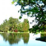 Lago en el Real Club de golf La Coruña