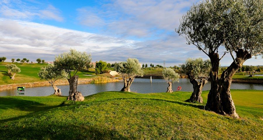 Campo de Golf Sotoverde en Valladolid | MundoGolf.golf