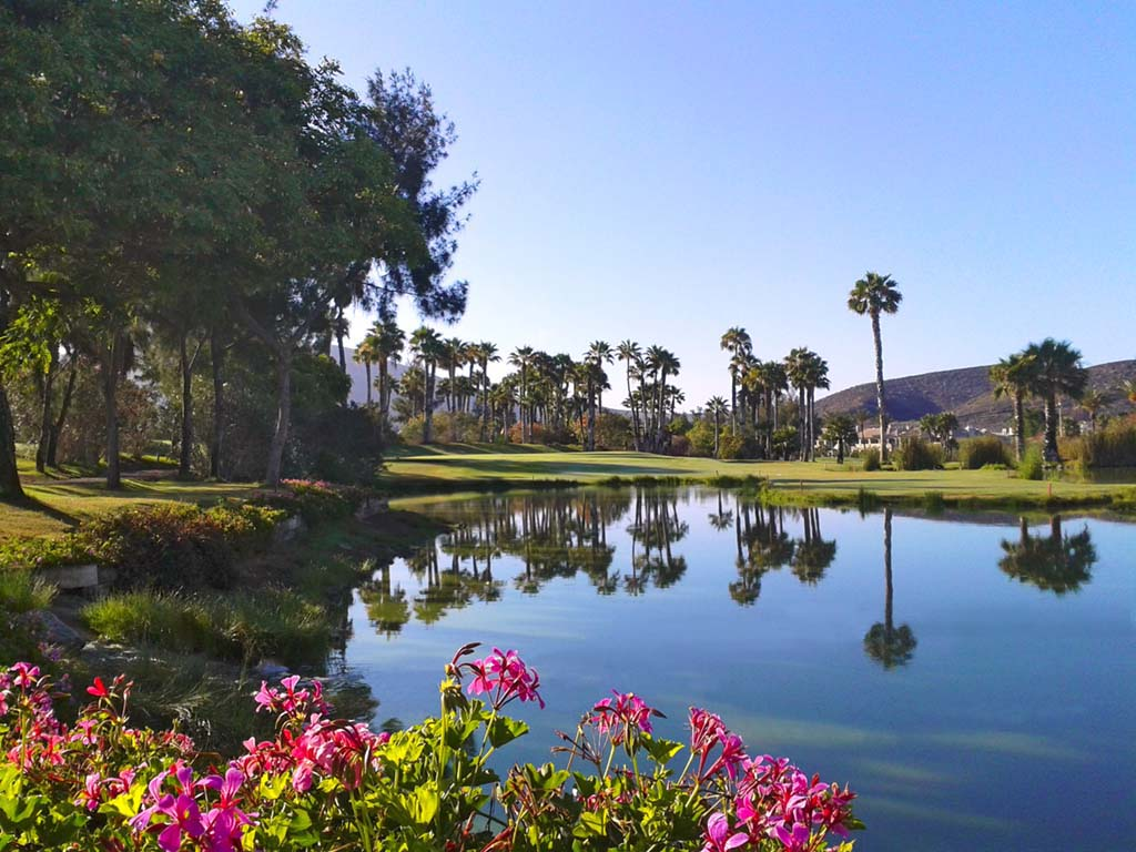 19-club-de-golf-las-americas-tenerife